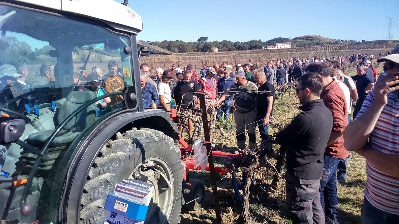 Le projet agroenvironnemental des Vignerons de la Vicomté