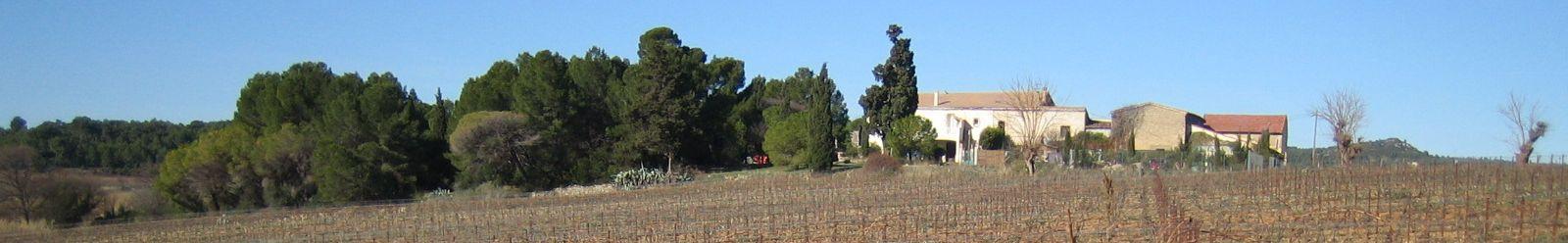 Ocm viticole chambre d 39 agriculture de l 39 h rault - Chambre agriculture de l ain ...